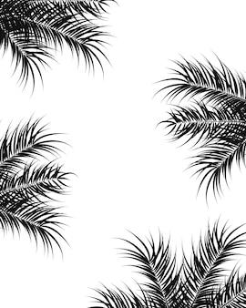 Design tropicale con foglie di palma e piante nere su sfondo bianco