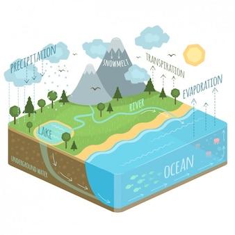 Diagramma ciclo dell'acqua