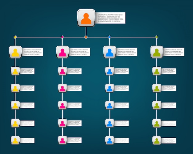 Diapositiva organigramma aziendale
