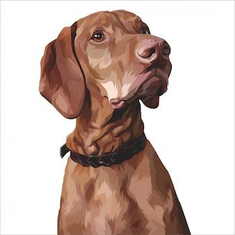 Dipinto bellissimo animale domestico