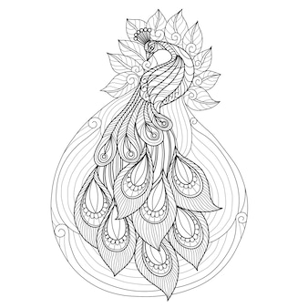 Disegnata a mano bellissimo pavone