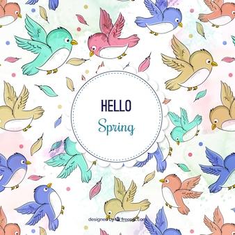 Disegnata a mano modello piacevole uccelli colorati