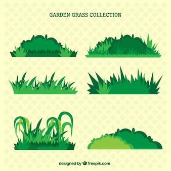 Disegnata a mano varietà di bushs