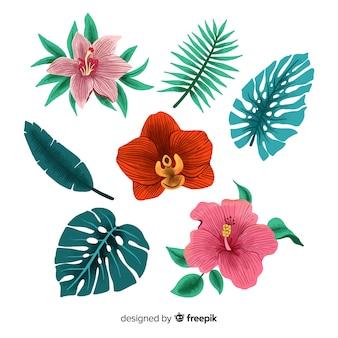 Disegnati a mano fiori e foglie tropicali