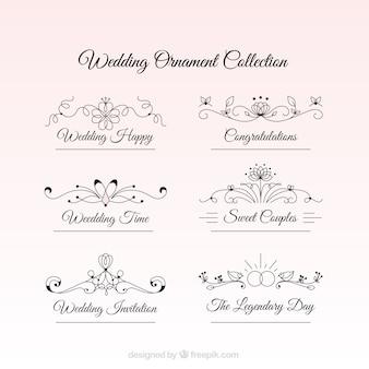 Disegnati a mano ornamenti floreali del giorno delle nozze