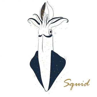 Disegnato a mano del calamaro isolato su fondo bianco.