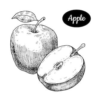 Disegnato a mano di mela.