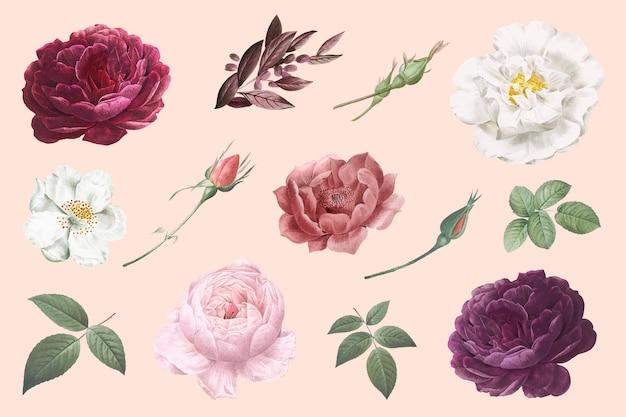 Disegni di fiori vintage