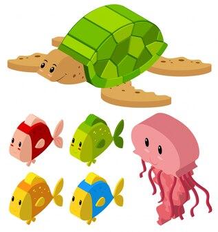 Disegno 3d per pesci e tartarughe
