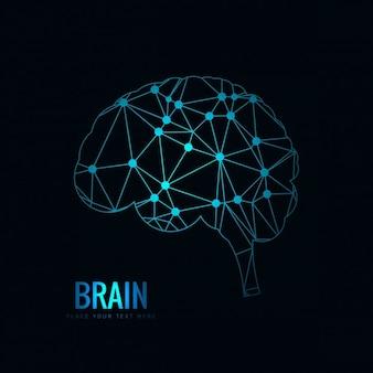 Disegno cervello poligonale