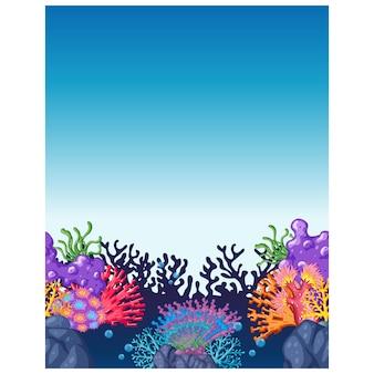 Disegno coralli sfondo