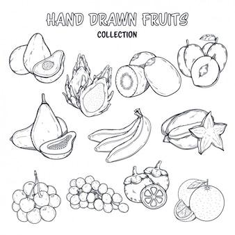 Disegno da colorare frutta