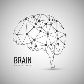 Disegno del cervello Lineal