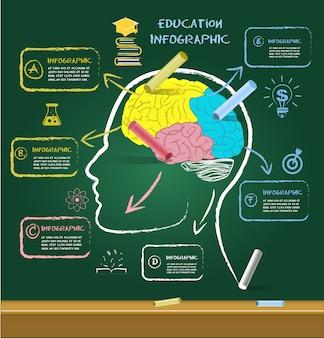Disegno del cervello per l'educazione con il gesso sulla lavagna.
