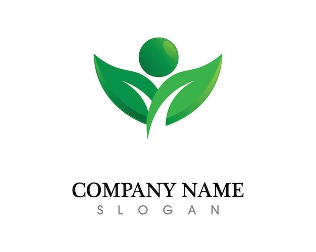 Disegno del logo foglia albero