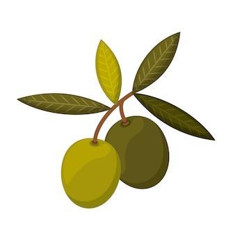 Disegno dell'icona isolato semi di oliva