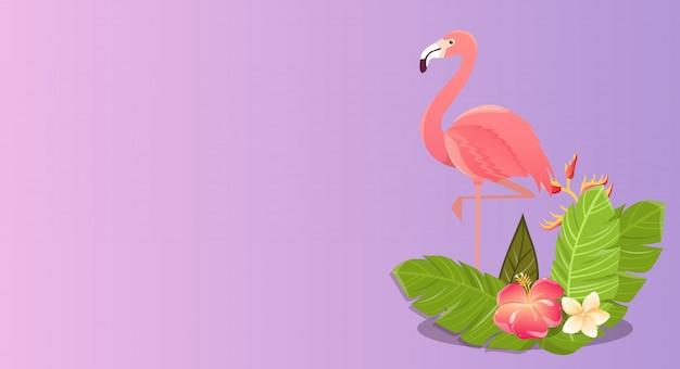 Disegno dell'illustrazione dell'uccello del fenicottero