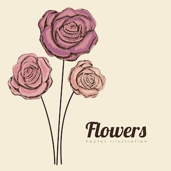 Disegno delle rose