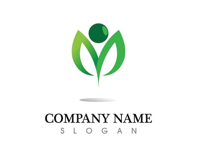Disegno di logo di vettore di foglia dell'albero, ecologico