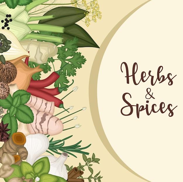 Disegno di sfondo con erbe e spezie