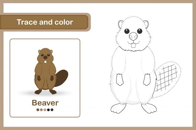 Disegno di un foglio di lavoro per bambini in età prescolare, traccia e colora: beaver