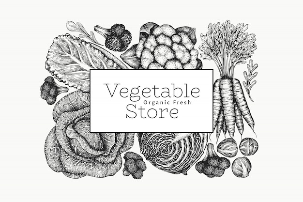 Disegno di verdure schizzo disegnato a mano. modello di bandiera di vettore di alimenti freschi biologici.