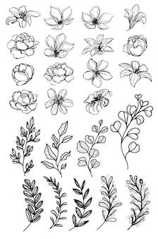 Disegno e schizzo della mano dei fiori in bianco e nero