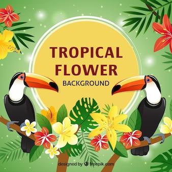 Disegno pianeggiante tucano sfondo fiore tropicale