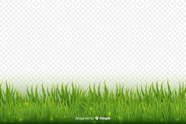 Disegno realistico del bordo dell'erba verde