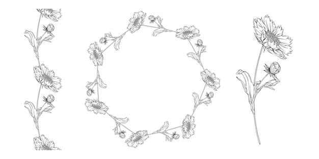 Disposizione dei fiori di contorno in bianco e nero di vettore con i fiori della camomilla
