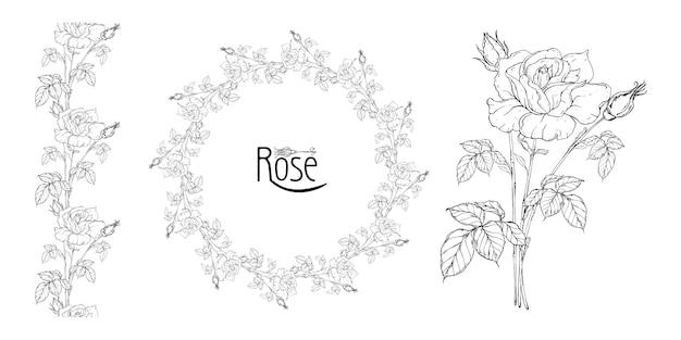 Disposizione floreale vettoriale con fiori rose e boccioli di rosa