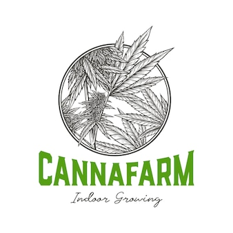 Distintivo di cannabis indoor farm