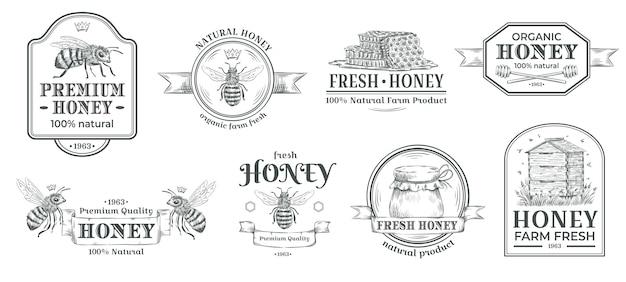 Distintivo di fattoria di miele. logo di apicoltura, retro distintivi dell'ape e insieme disegnato a mano d'annata dell'illustrazione di vettore dell'etichetta dell'idromele