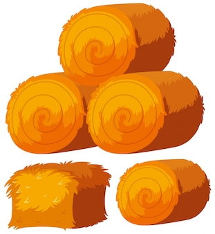Diverse forme di covoni di fieno