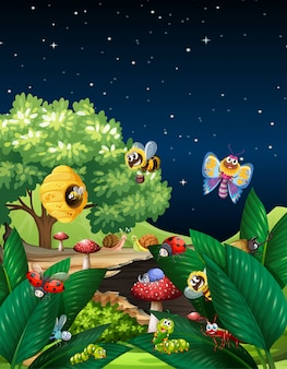 Diversi insetti che vivono nella scena del giardino di notte