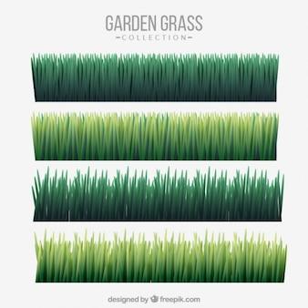 Diversi raccolta dell'erba verde