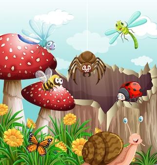 Diversi tipi di insetti in giardino