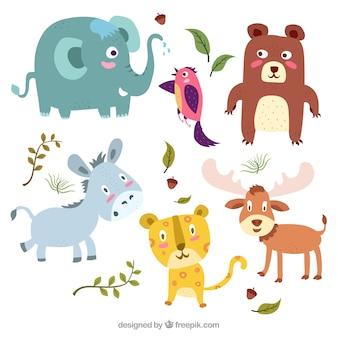 Divertente pacco di animali colorati