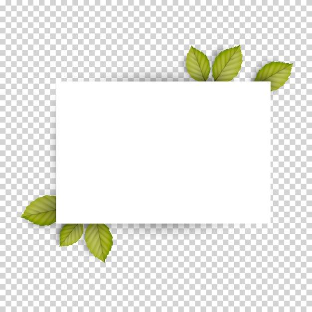 Documento di foglio bianco in bianco orizzontale e foglie di primavera fresca verde