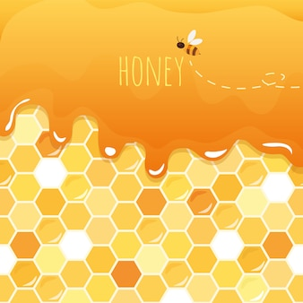 Dolce miele lucido con nido d'ape.