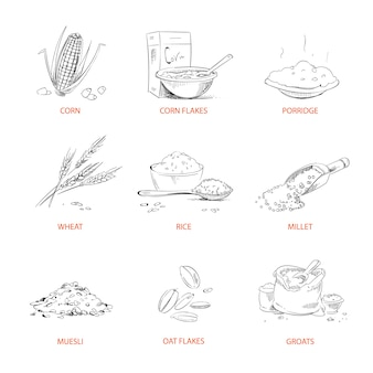 Doodle chicchi di cereali