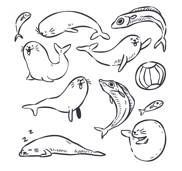 Doodle di foca