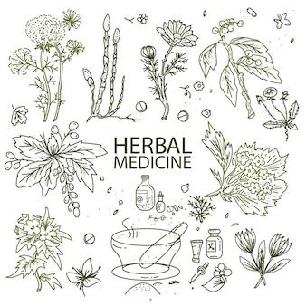 Doodle di medicina di erbe