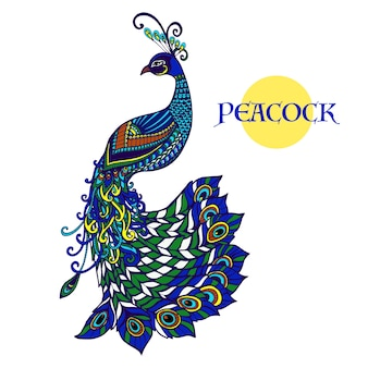 Doodle di pavone decorativo