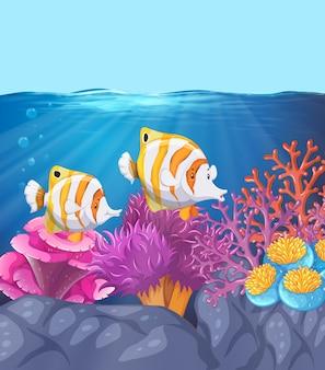 Due bellissimi pesci sott'acqua