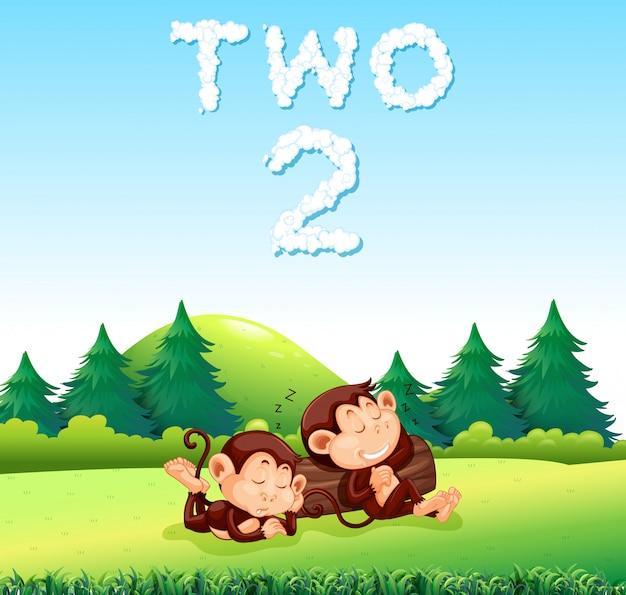Due scimmie che dormono nella natura
