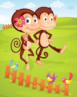 Due scimmie in campagna