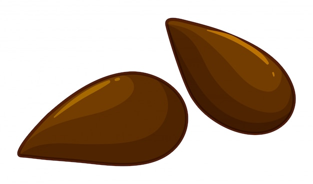 Due semi di mela frutta