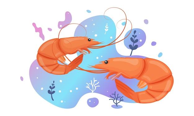 Due simpatici gamberetti in mare. gamberetti oceanici dai colori vivaci. vita selvaggia marina subacquea. illustrazione.