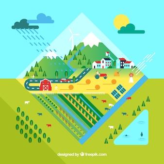 Ecologia e concetto di ecosistema